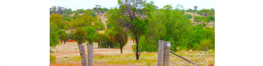 Living and teaching in rural & remote communities